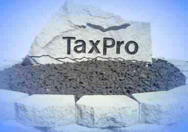 Professional accounting, online tax preparation with free e-file, tax preparation, software programs, web site consulting, security equipment, and custom built computers by TaxPro of Boise, Idaho.